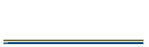 Il Vigneto Roma Logo